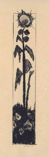 zonnebloem 1 , lithografie, 37 × 16 cm, oplage 5