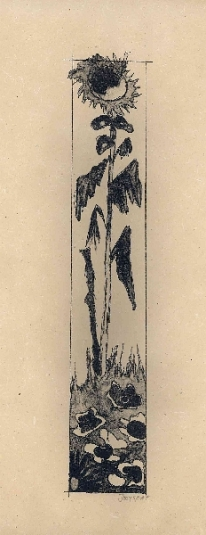 zonnebloem 2, lithografie, 37 ¥ 16 cm, oplage 5