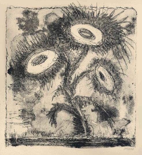 Zonnebloemen, lithografie, 37 × 30 cm, oplage 5